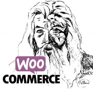 איך להשתמש שוב באשף ההתקנות של woocommerce